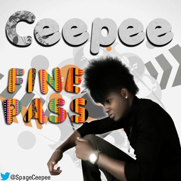 ceepee-fine_pass