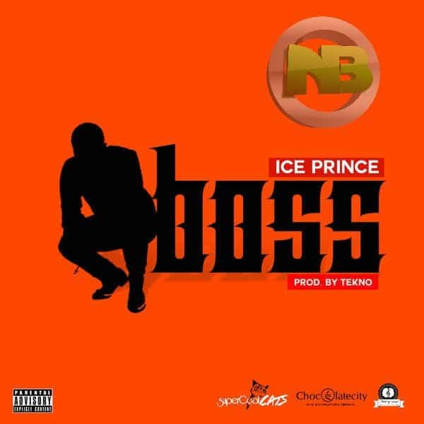 Ice Prince Boss Snippet