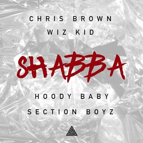 Chris Brown ft Wizkid Shabba