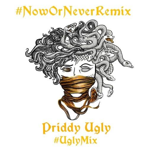 Priddy Ugly Now or Never Remix