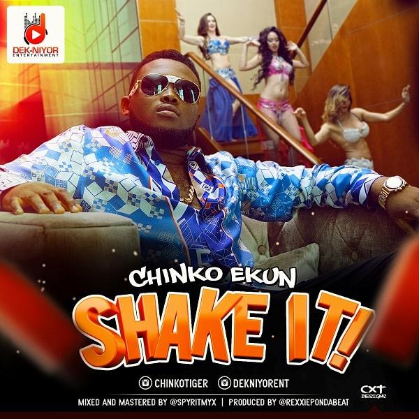 Chinko Ekun Shake It