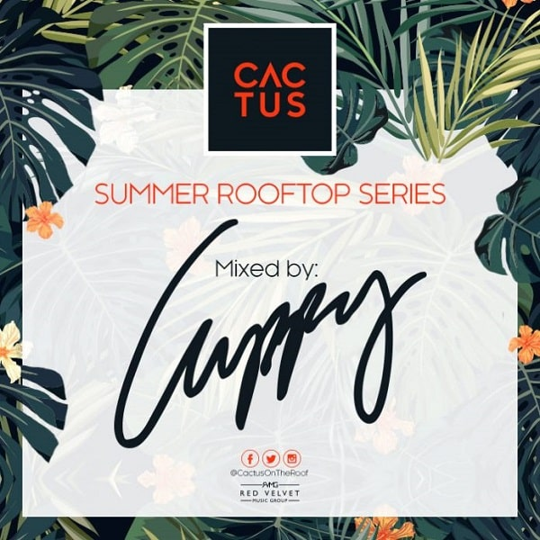 DOWNLOAD MP3: DJ Cuppy – Cactus On The Roof Mix - NaijaVibes