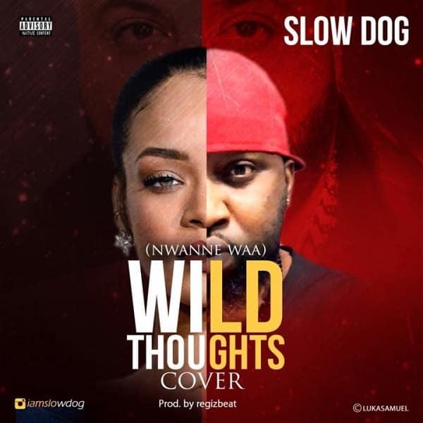 SlowDog Nwanne Waa (Wild Thoughts Cover) Artwork