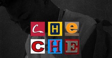 Mayorkun Che Che Artwork