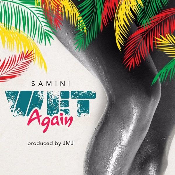 Samini Wet Again Artwork