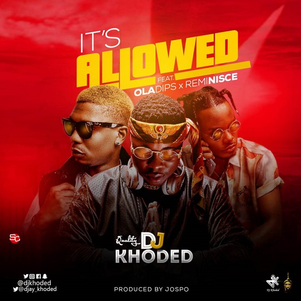 DJ Khoded Its Allowed Artwork