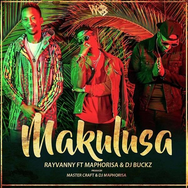Rayvanny Makulusa Artwork
