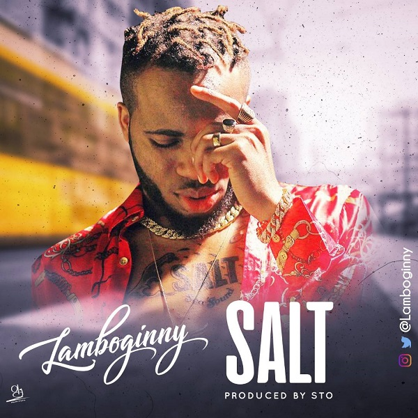 Lamboginny Salt Artwork