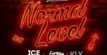 DJ Kaywise Normal Level Artwork