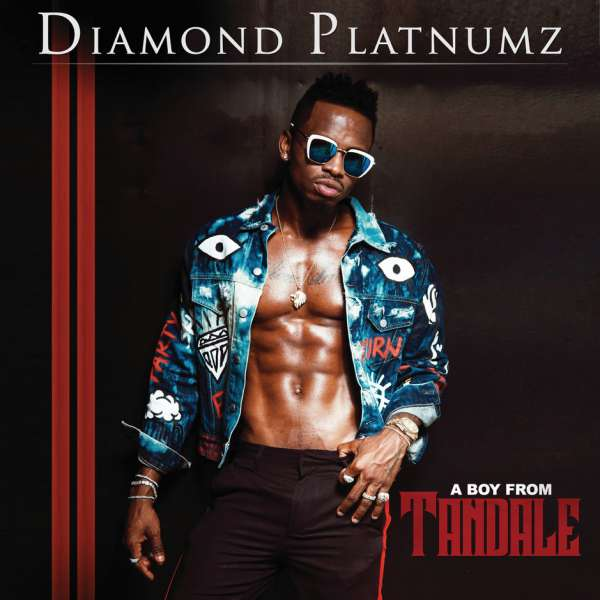 Diamond Platnumz African Beauty
