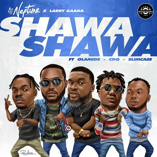 DJ Neptune Shawa Shawa