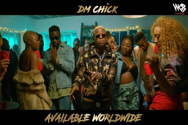 Harmonize DM Chick Video