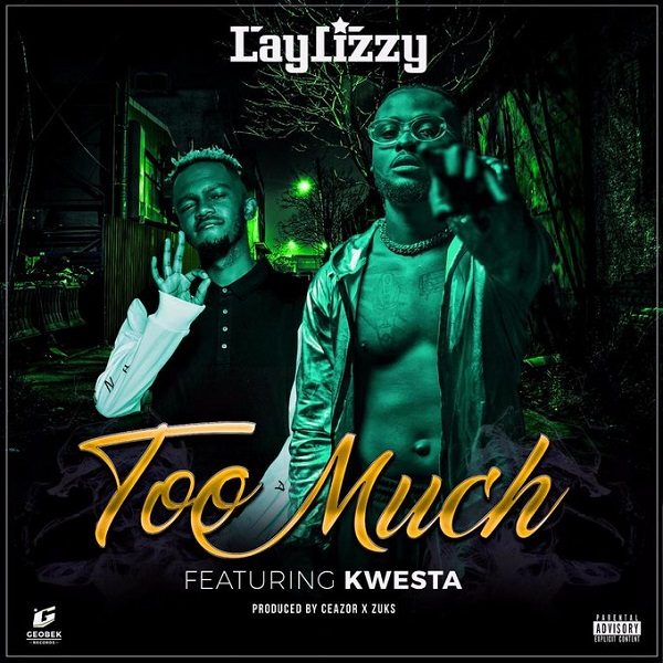 Laylizzy Too Much Artwork