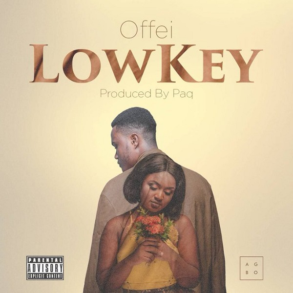 Offei Lowkey Artwork