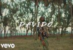Davido Assurance Video