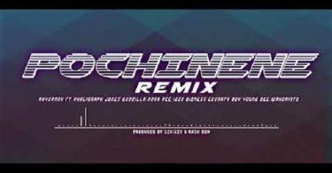 Rayvanny Pochi Nene (Remix)