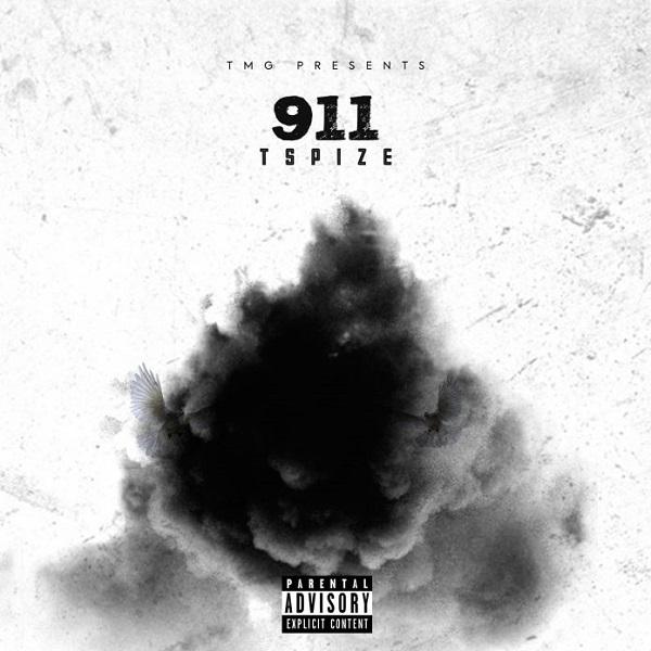 Tspize 911 Artwork