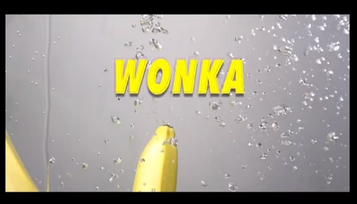 Victoria Kimani Wonka Video