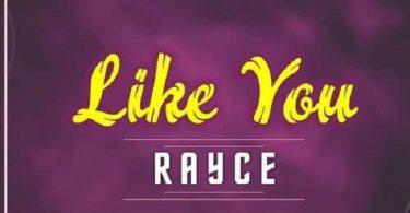 Rayce Like You Artwork