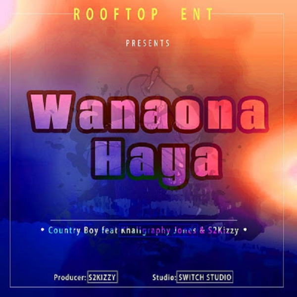 Country Boy Wanaona Haya Artwork