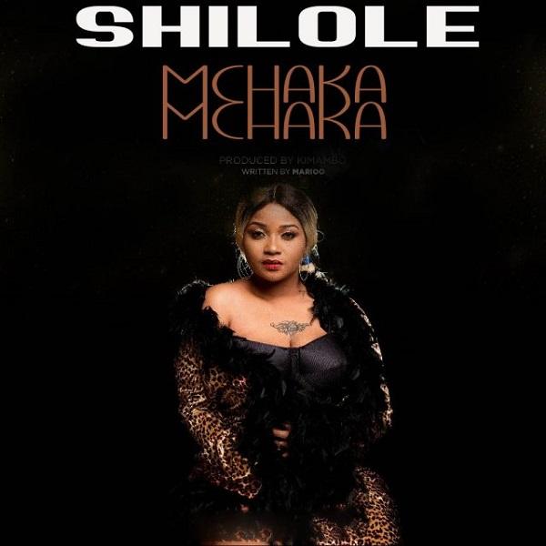 Shilole Mchaka Mchaka Artwork