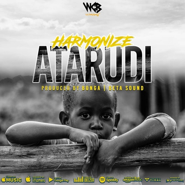Harmonize Atarudi Artwork