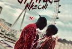 Download mp3 Attitude Nkechi mp3 download