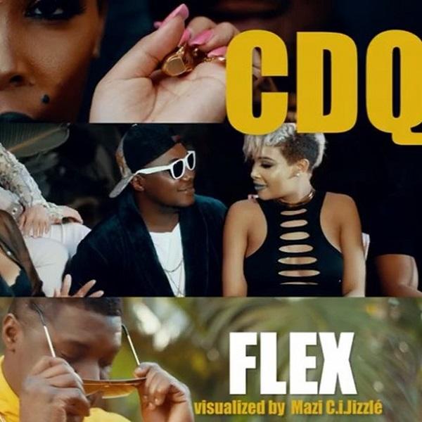 CDQ Flex Video