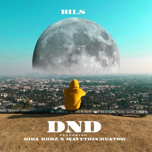 BILS DND