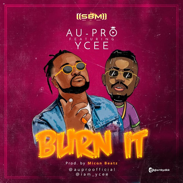 Au Pro ft Ycee Burn It