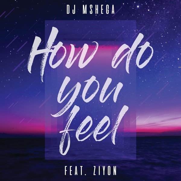 DOWNLOAD MP3: DJ Mshega – How Do You Feel ft  Ziyon | NaijaVibes