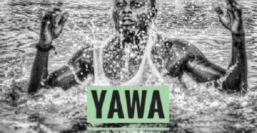 Kelly Hansome Yawa