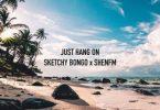 Sketchy Bongo - Just Hang On