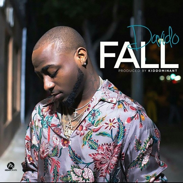Davido Fall Artwork