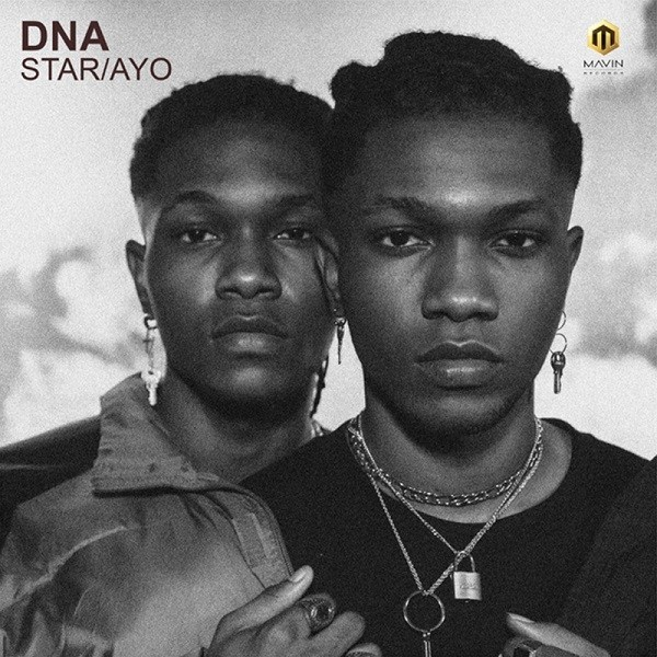 DNA Star