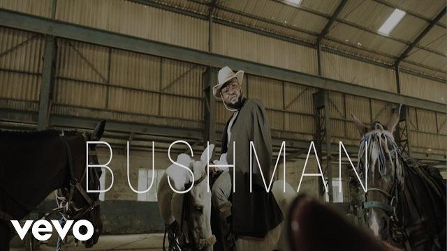 Dr Dolor Bushman Video