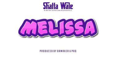 Shatta Wale Melissa