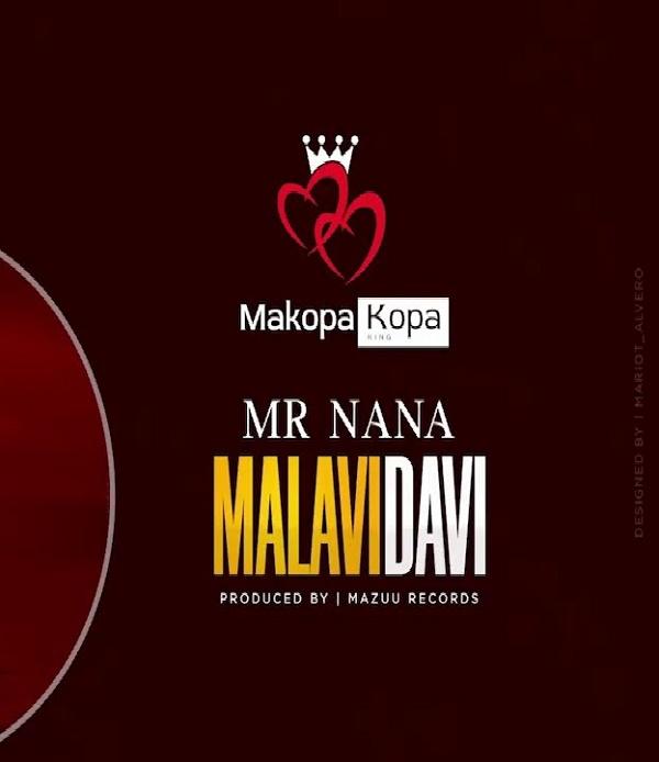 Mr Nana Malavidavi