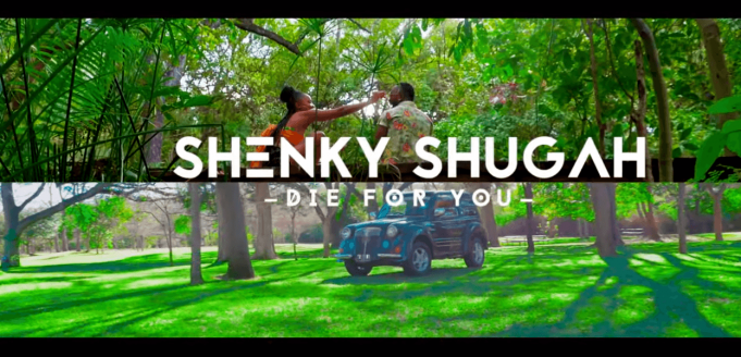 Shenky Shugah Die For You video
