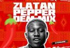 DJ Kaywise Pepper Dem Mix