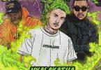 Costa Titch Nkalakatha (Remix)
