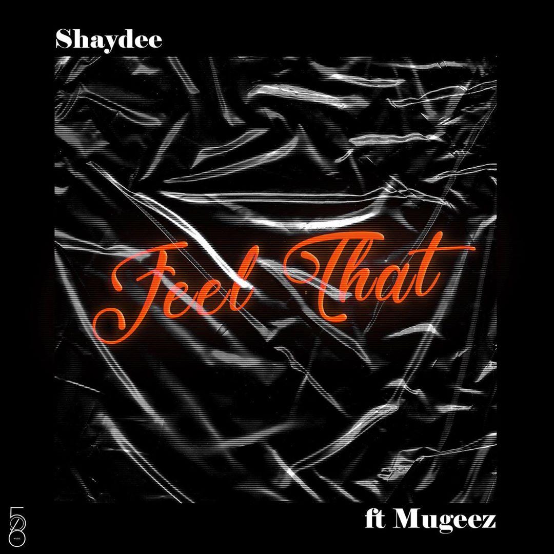Shaydee Feel That