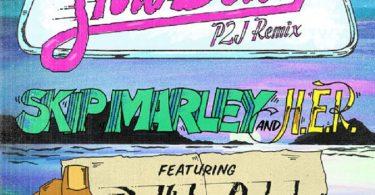 Skip Marley Slow Down Remix