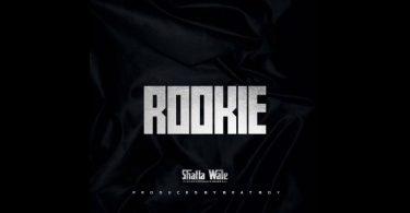 Shatta wale Rookie
