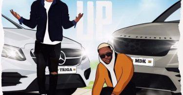 Triga Pull Up
