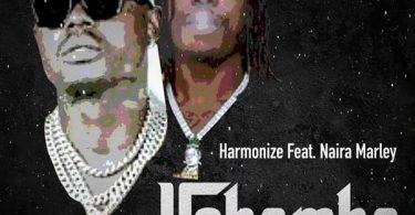 Harmonize Ushamba (Remix)