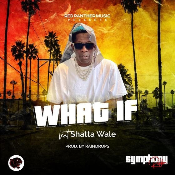 Shatta Wale What If