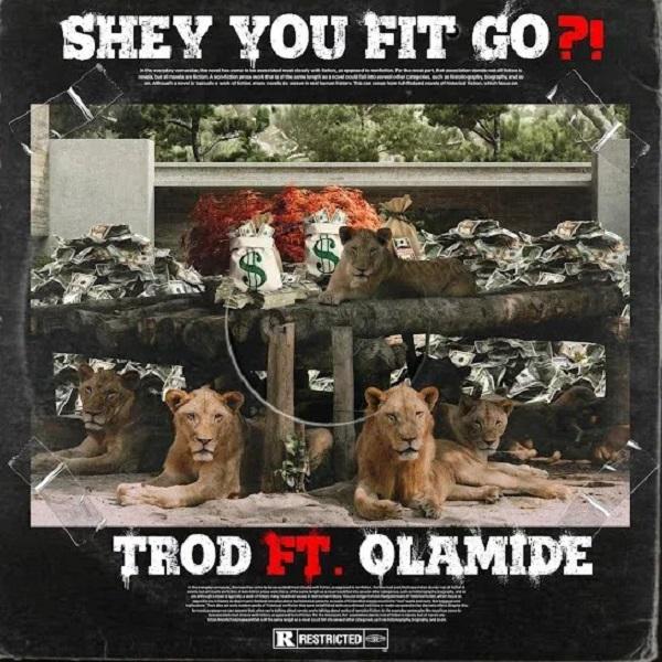 TROD Shey You Fit Go
